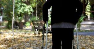Mujer mayor que camina con el caminante en parque del otoño metrajes