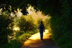 Mujer mayor que camina en puesta del sol Imágenes de archivo libres de regalías