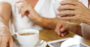 Mujer mayor que come café mientras que charla con los amigos 4k metrajes