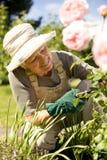 Mujer mayor que fija para arriba su jardín Foto de archivo libre de regalías