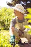 Mujer mayor que mira lejos sonriente mientras que cultiva un huerto Foto de archivo