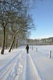 Mujer mayor que recorre en una pista de la maravilla del invierno Foto de archivo libre de regalías