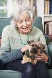 Mujer mayor que sostiene el perro casero dentro Fotos de archivo