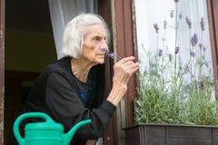 Mujer mayor solamente en ventana de la casa Fotografía de archivo