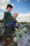 Mujer mayor y el cultivar un huerto joven del muchacho Foto de archivo libre de regalías