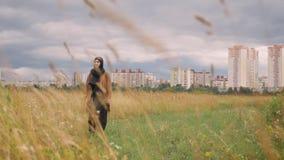 Mujer musulmán joven en hijab que camina a través de campo de trigo, aumentando las manos y trigo conmovedor, ciudad en fondo almacen de metraje de vídeo