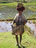 Mujer nativa del granjero fotografía de archivo libre de regalías