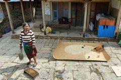 Mujer nepalesa que barre la tierra en Nepal Imagenes de archivo