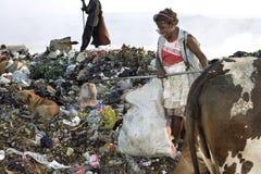 Mujer nicaragüense de trabajo, descarga de basura, Managua Imagen de archivo libre de regalías