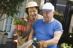 Mujer por las plantas de riego del hombre mayor en jardín Imagen de archivo libre de regalías