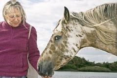 Mujer que acaricia el caballo Imagenes de archivo