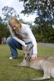 Mujer que acaricia el canguro en el parque zoológico de Australia Imágenes de archivo libres de regalías