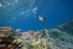 Mujer que bucea en agua de la turquesa Foto de archivo libre de regalías