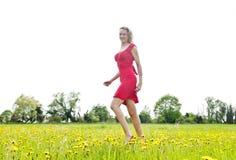 Mujer que camina en el campo de la flor Foto de archivo