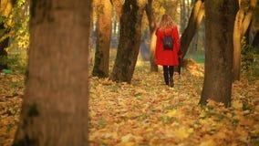 Mujer que camina en el parque del otoño almacen de metraje de vídeo