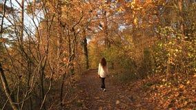 Mujer que camina en el parque, visión trasera metrajes