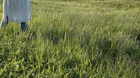 Mujer que camina en la hierba verde fresca Tiempo de relajaci?n almacen de metraje de vídeo