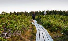 Mujer que camina en la trayectoria de madera en naturaleza fotografía de archivo