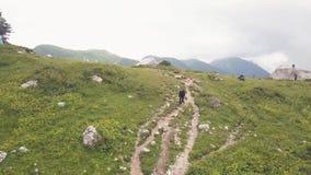 Mujer que camina en rastro de montaña mientras que camina la opinión del abejón del viaje almacen de video