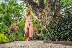 Mujer que camina en un pavimento de adoquín texturizado, Reflexology Guijarro Fotos de archivo libres de regalías