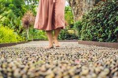 Mujer que camina en un pavimento de adoquín texturizado, Reflexology Guijarro Imágenes de archivo libres de regalías