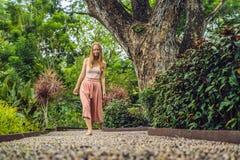 Mujer que camina en un pavimento de adoquín texturizado, Reflexology Guijarro Imagenes de archivo