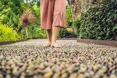 Mujer que camina en un pavimento de adoquín texturizado, Reflexology Guijarro Fotos de archivo
