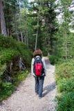 Mujer que camina en una trayectoria en el bosque Fotografía de archivo libre de regalías