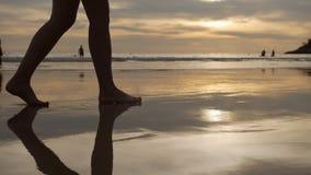 Mujer que camina a lo largo de la playa descalzo sobre puesta del sol almacen de video