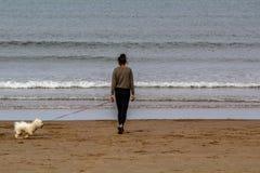 Mujer que camina su perro en la playa Foto de archivo