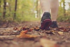 Mujer que camina a través de bosque. fotos de archivo