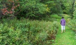Mujer que camina a través de campos del país Fotografía de archivo libre de regalías