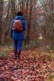 Mujer que camina a través del arbolado de la caída, vestido en una chaqueta caliente Fotos de archivo libres de regalías