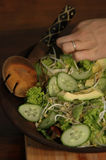Mujer que come del tazón de fuente de ensalada en el vector Fotos de archivo