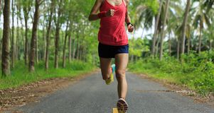 Mujer que corre en rastro tropical del bosque de la mañana Fotos de archivo