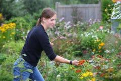 Mujer que cultiva un huerto Fotos de archivo