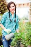 Mujer que cultiva un huerto Imagen de archivo libre de regalías