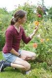 Mujer que cultiva un huerto Foto de archivo
