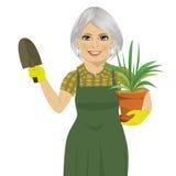 Mujer que cultiva un huerto mayor que sostiene la planta verde de Chlorophytum en el pote y la paleta Foto de archivo