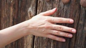 Mujer que desliza la mano contra puerta de madera vieja en la cámara lenta Superficie áspera del tacto femenino de la mano de la  metrajes