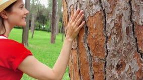 Mujer que desliza la mano a lo largo del árbol viejo en la cámara lenta Superficie conmovedora de la corteza de la mano femenina  almacen de video