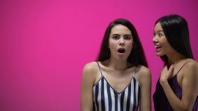 Mujer que dice las noticias increíbles a su amigo chocado, secretos de las muchachas, chisme almacen de metraje de vídeo