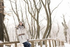 Mujer que disfruta de día de invierno nevoso fotografía de archivo libre de regalías