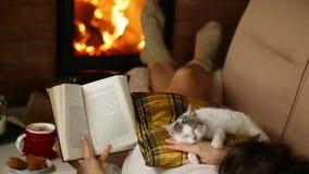 Mujer que disfruta de un buen libro y de la compañía de su gatito almacen de metraje de vídeo