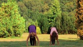 Mujer que hace yoga en hierba verde almacen de video