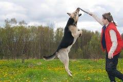 Mujer que juega con el perro Imagenes de archivo