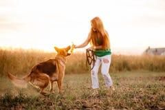 Mujer que juega con el perro Imagen de archivo
