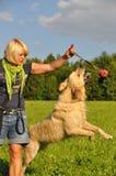 Mujer que juega con su perro foto de archivo libre de regalías