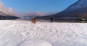 Mujer que juega con su perro de Airedale Terrier en nieve almacen de video