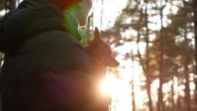 Mujer que juega con su perro en la puesta del sol en bosque